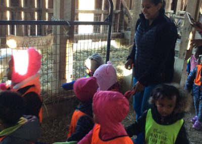Children at Millers Farm